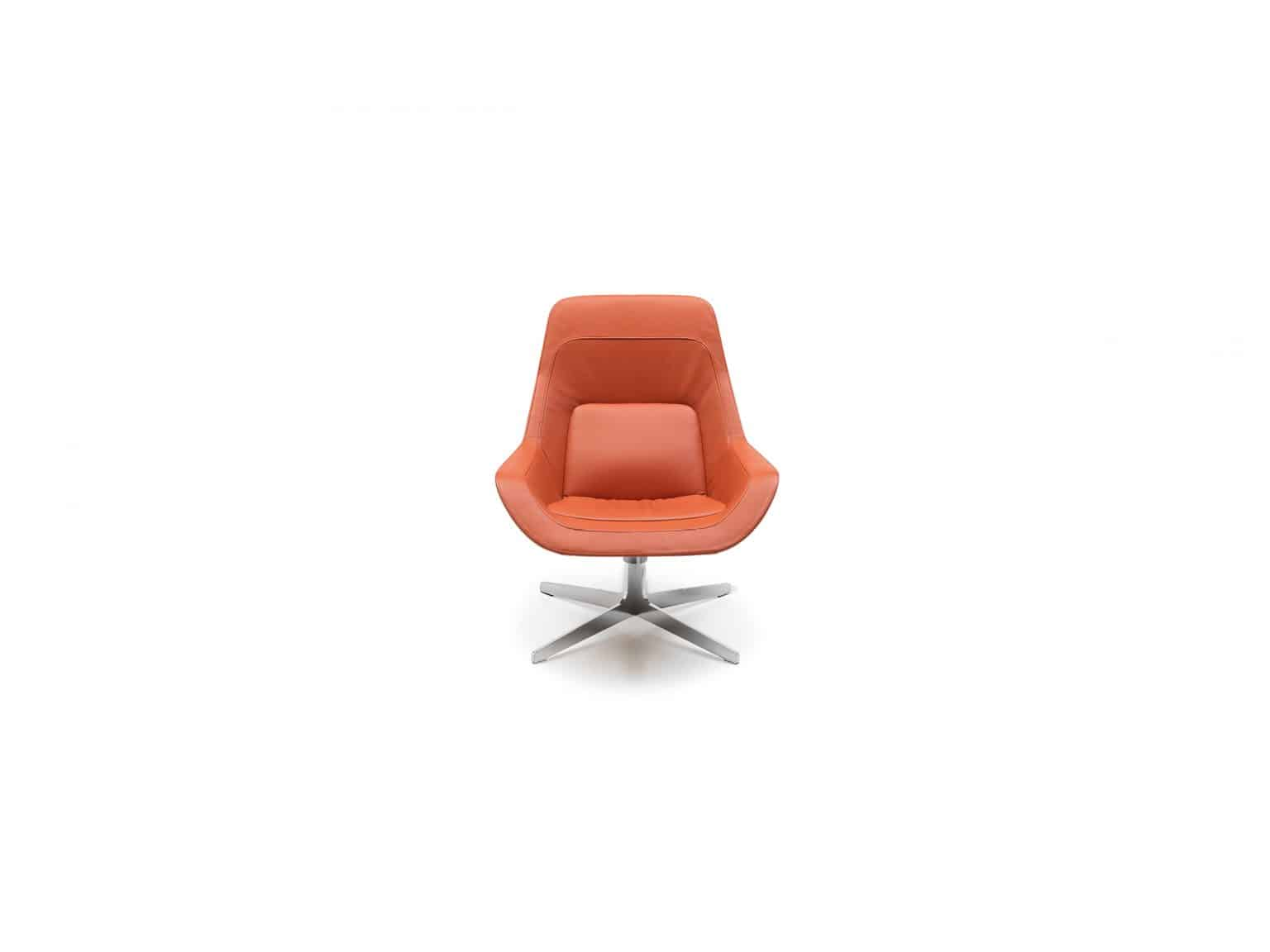 De Sede fauteuil DS-144 pa