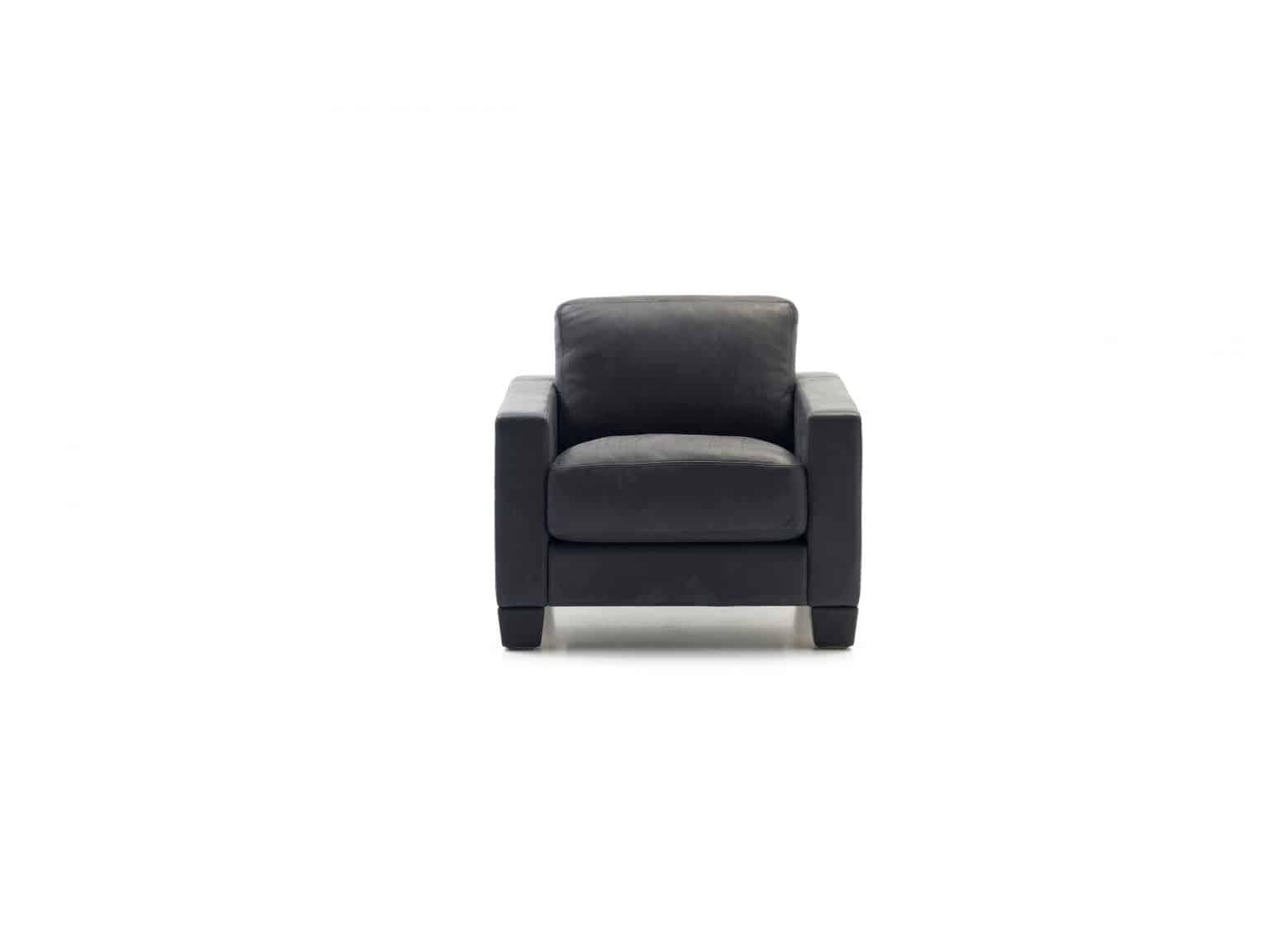 De Sede fauteuil DS-17 pa